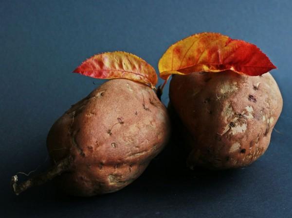 Batat – ziemniak na słodko