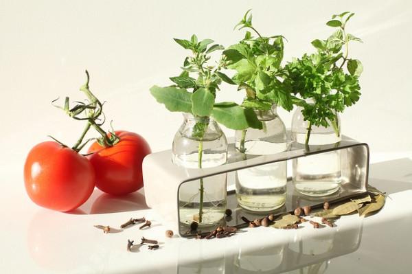"""Rośliny iich preparaty jako """"funkcjonalne"""" składniki żywności"""