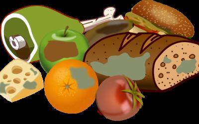 Żywienie zbiorowe – zagrożenia mikrobiologiczne wprodukcji iobrocie żywnością
