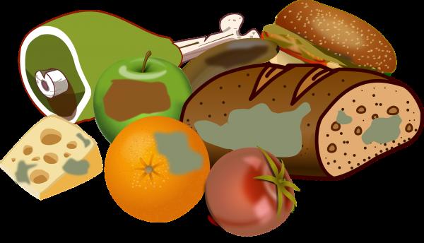 Żywienie zbiorowe – zagrożenia mikrobiologiczne w produkcji i obrocie żywnością