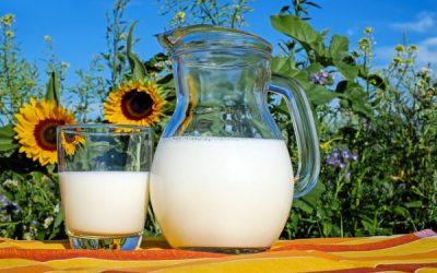 Dlaczego osoby starsze powinny spożywać mleko ifermentowane napoje mleczne?