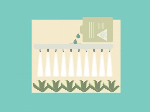 Pozostałości pestycydów w żywności – jak uniknąć narażenia na substancje szkodliwe