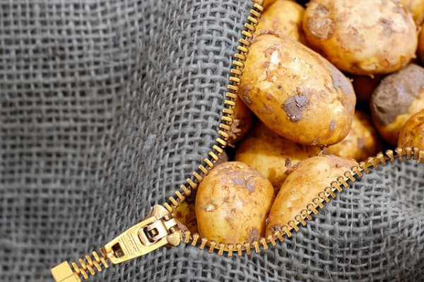 Czymożna obniżyć zawartość akryloamidu wżywności? – produkty ziemniaczane