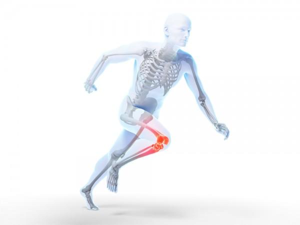 Jak ruch wpływa natkankę kostną człowieka