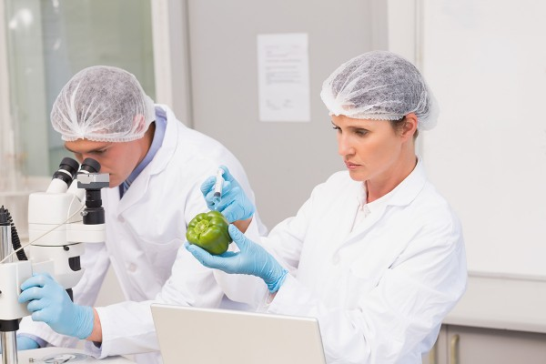 HACCP – definicja icele