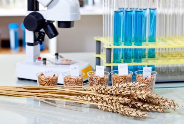 Metoda G12 oznaczania glutenu wproduktach spożywczych