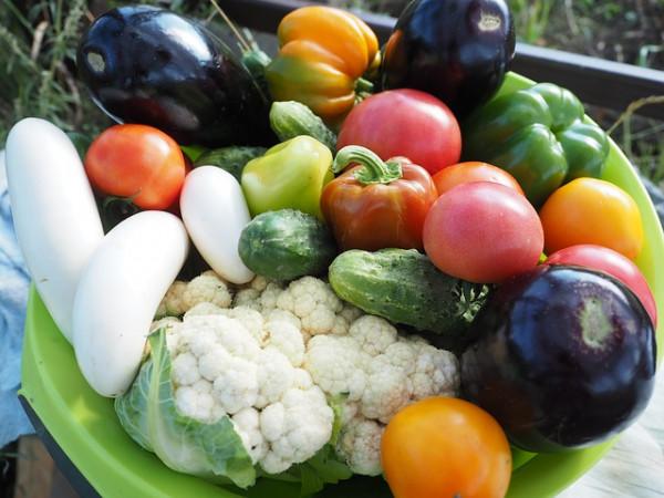 Czystosowanie diety wegetariańskiej grozi niedoborem żelaza?