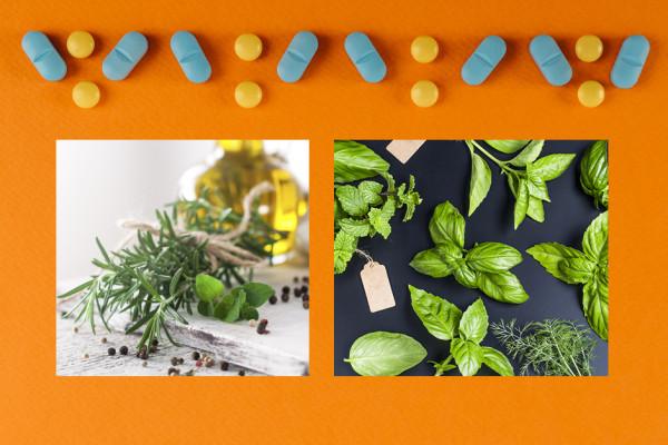 Właściwości lecznicze żywności